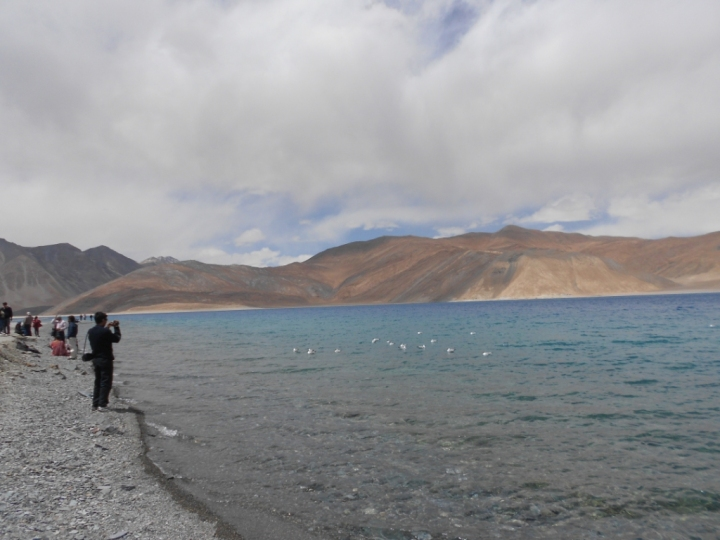 View Pangong Lake