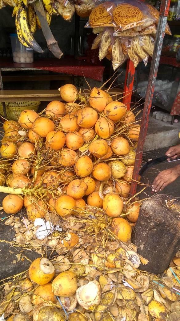 15 Coconut