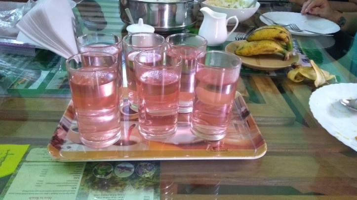 19 Ayurvedic Digestive Drink