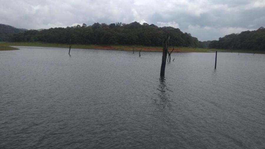 25 Periyar Wildlife Lake