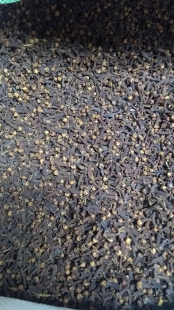 7 Clove Spice Kerala